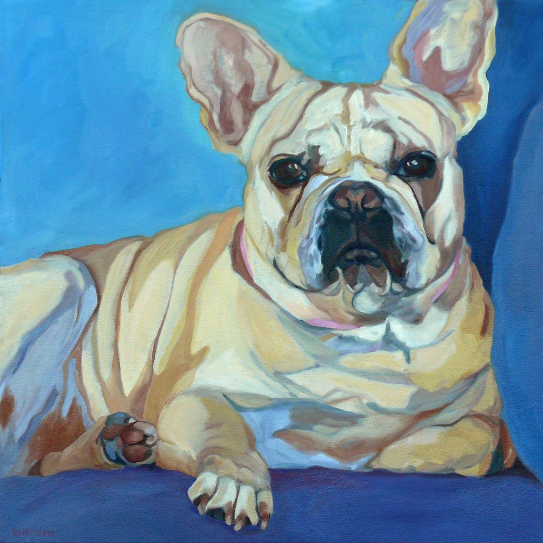Frenchie the French Bulldog
