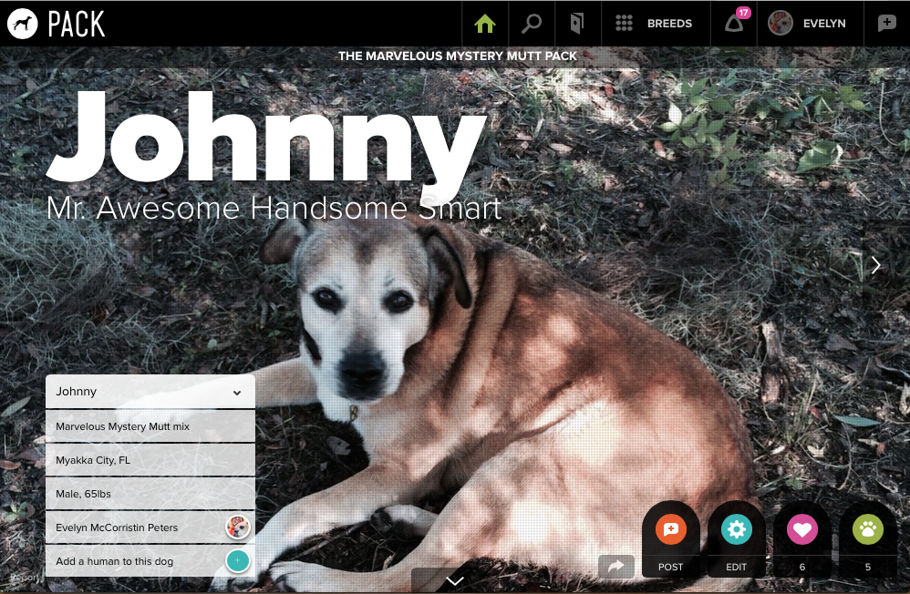 Johnny on Pack