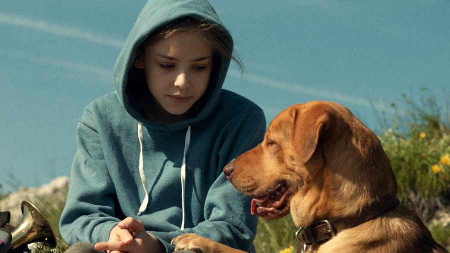 White God  is about a dog who is separated from his owner (Zsófia Psotta) when her father forces her to give him up. Teresa Ann Miller worked as a trainer for the Hungarian film.