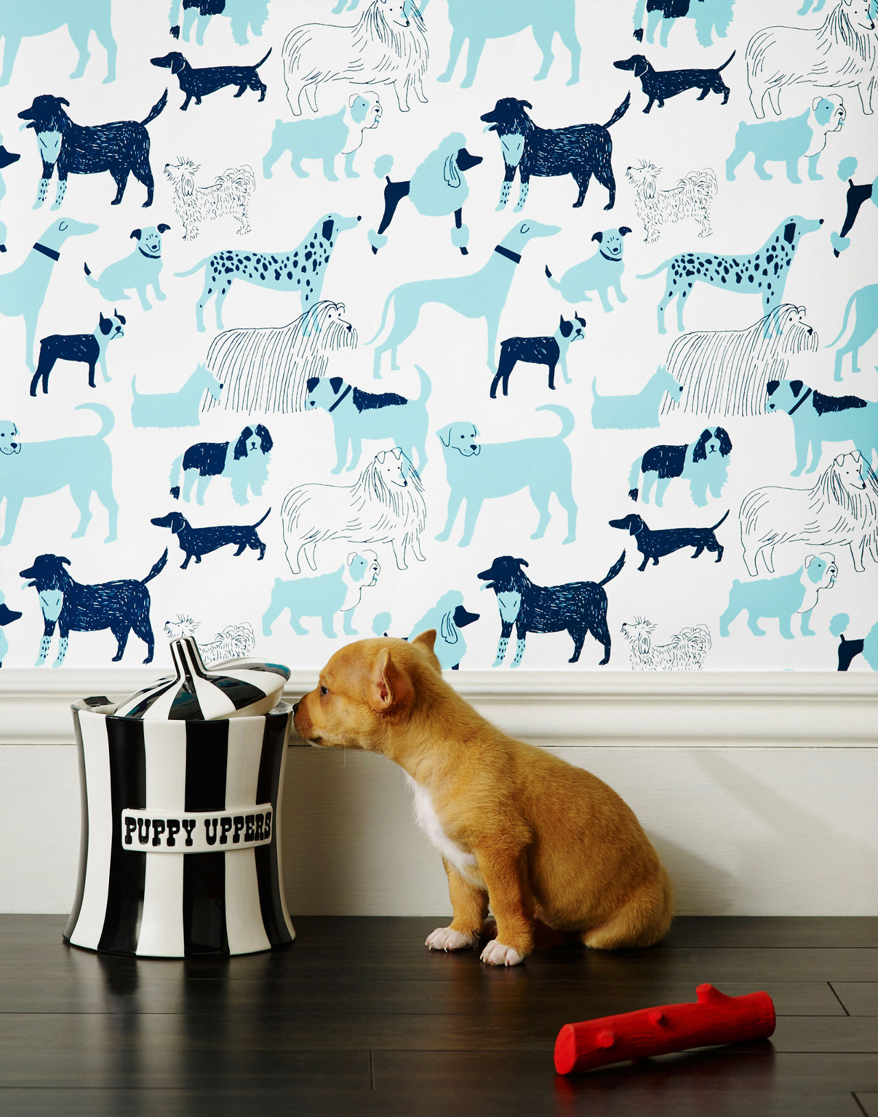 Dog Park Wallpaper by Julia Rothman