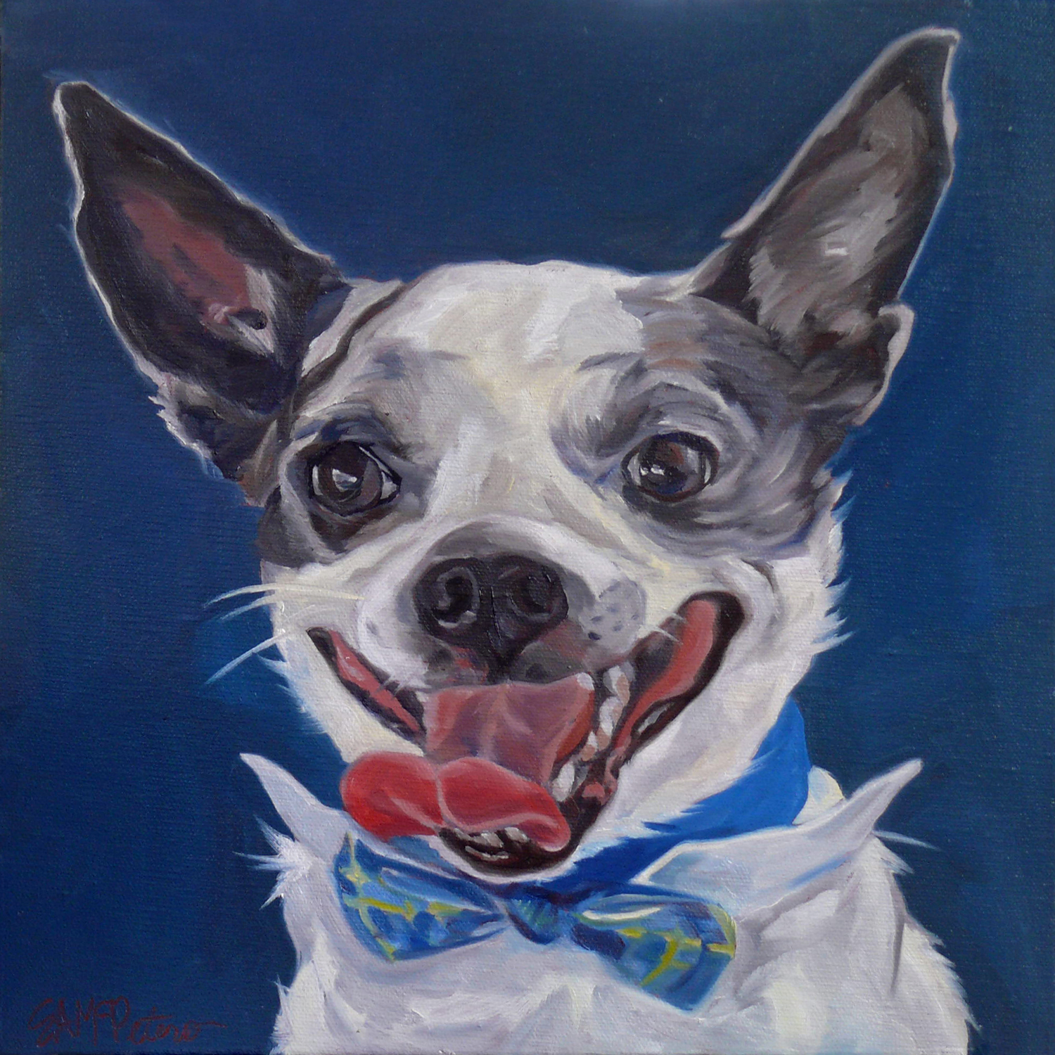 Bentley the Chihuahua 1500 Evelyn McCorristin Peters.jpg