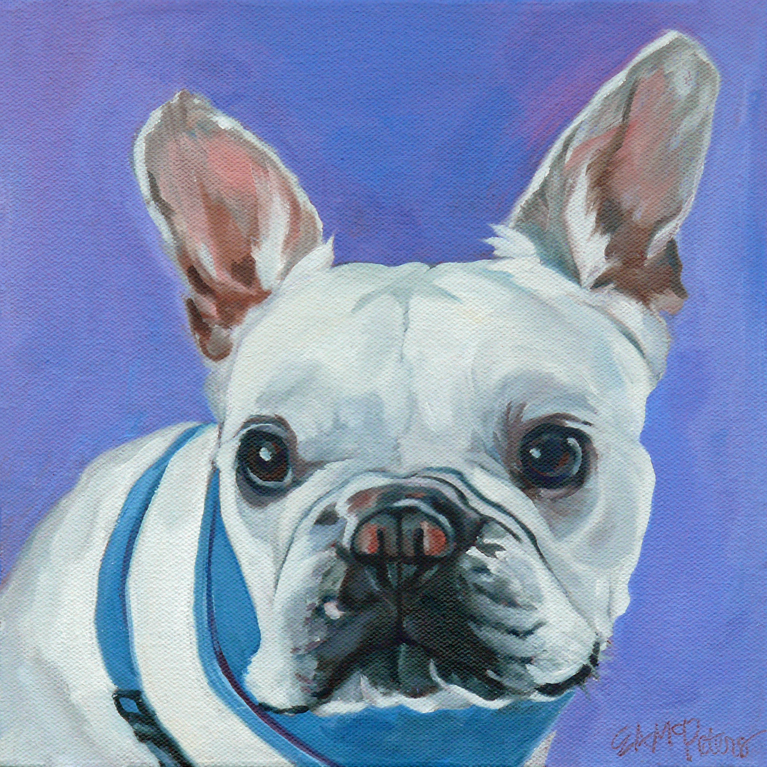 Buddy the French Bulldog