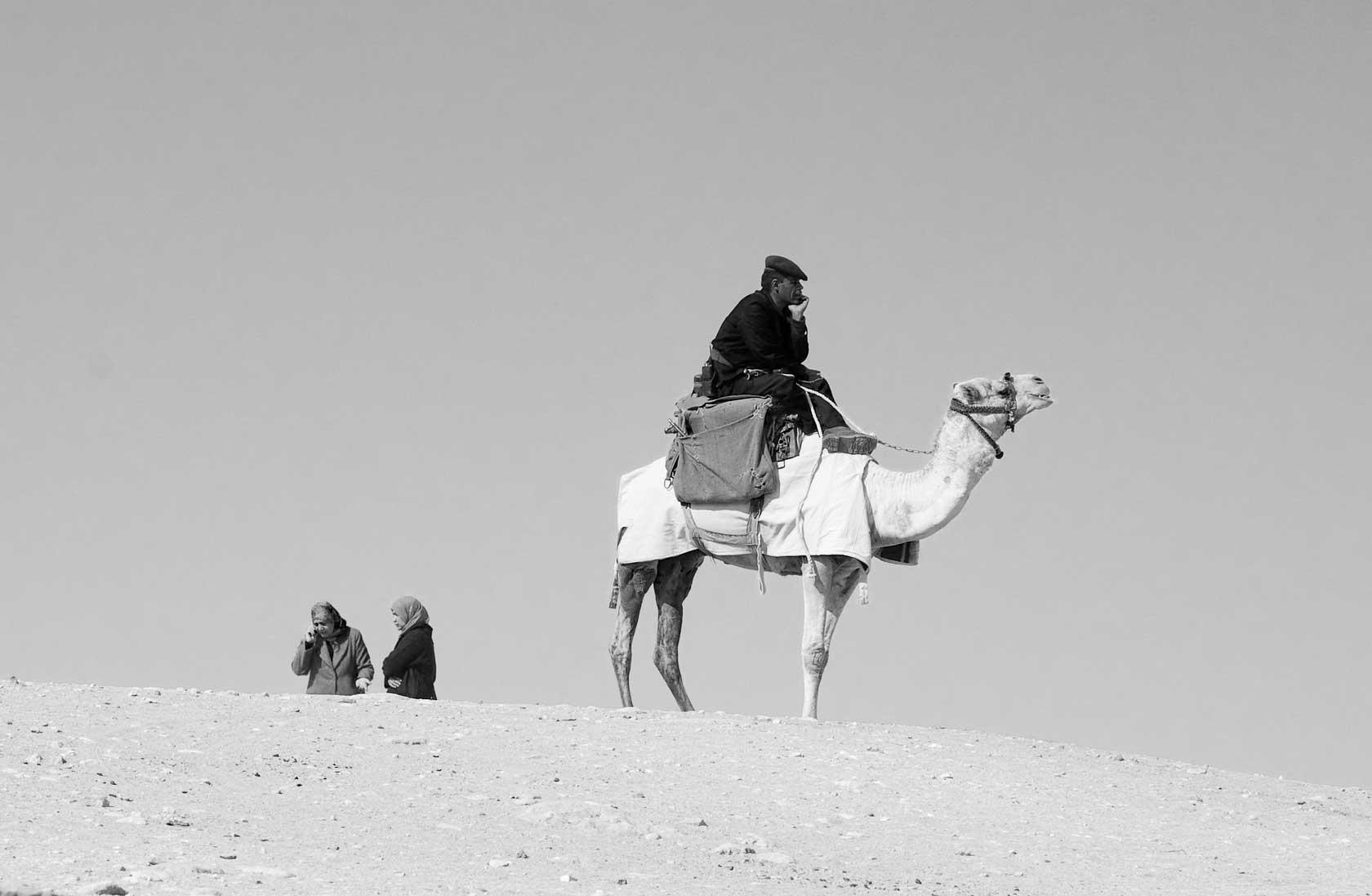 090100_DSC1436-Camel-Cop.jpg