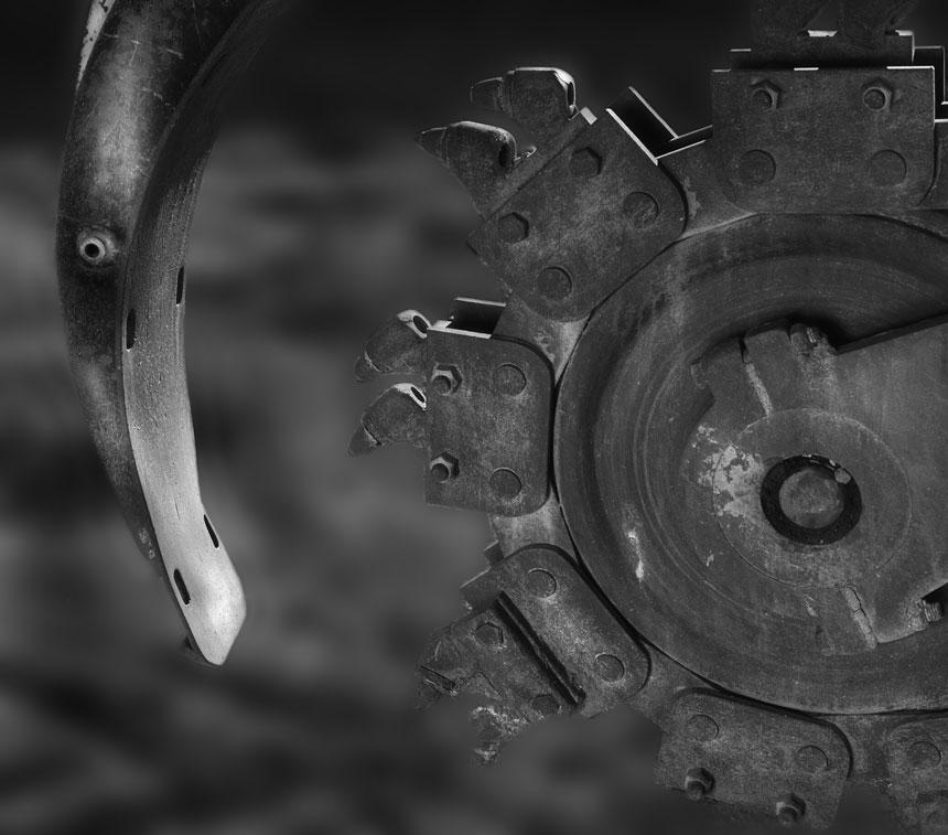 050514-Ant-eater.jpg