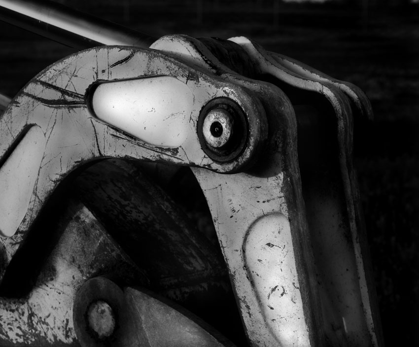 050514-Reptilian-beast.jpg