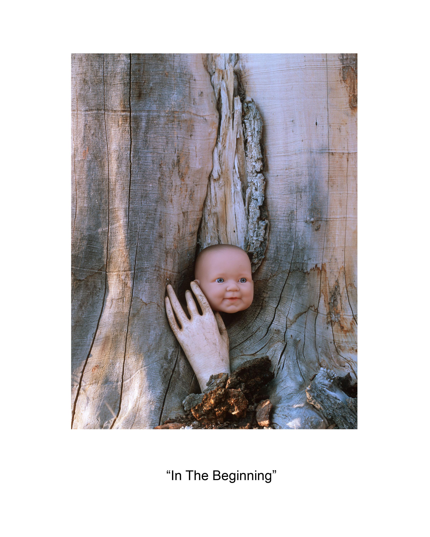 1 In the Beginning.jpg