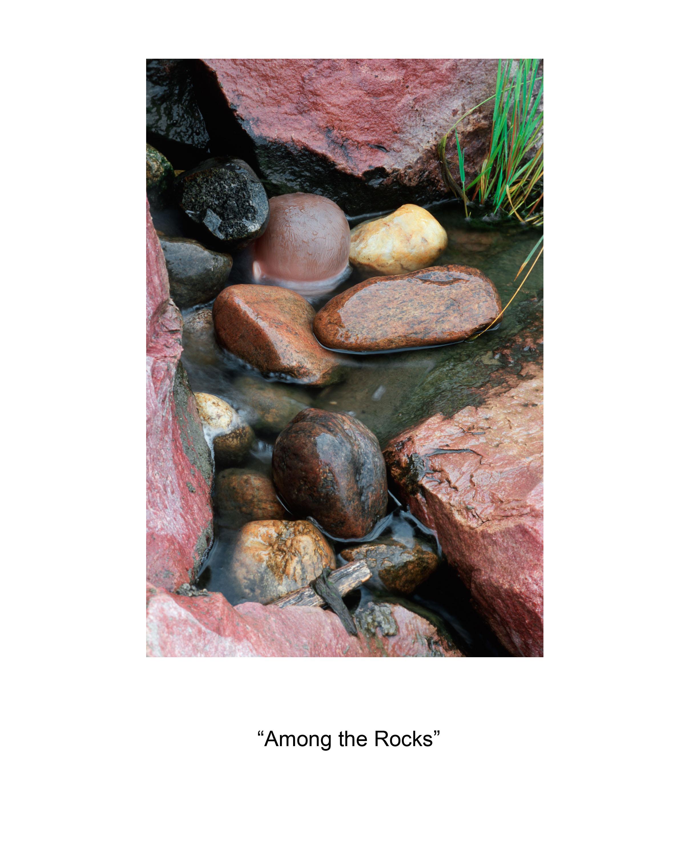 4 Among the Rocks.jpg