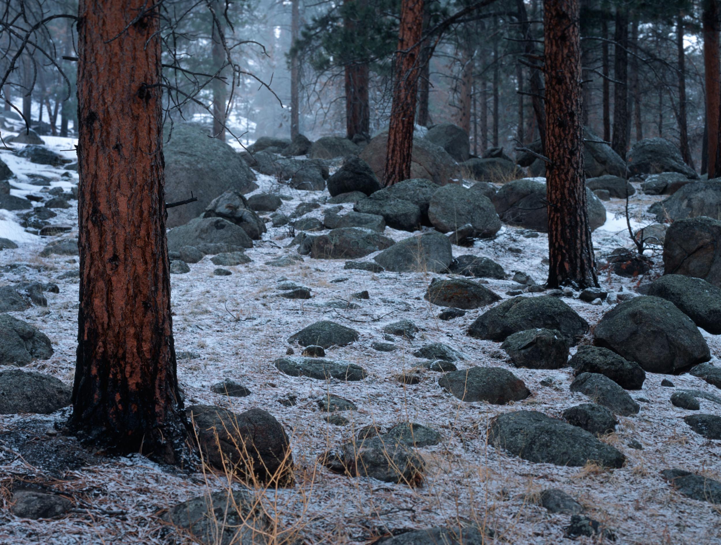050218 Snowstorn at RMNP.jpg