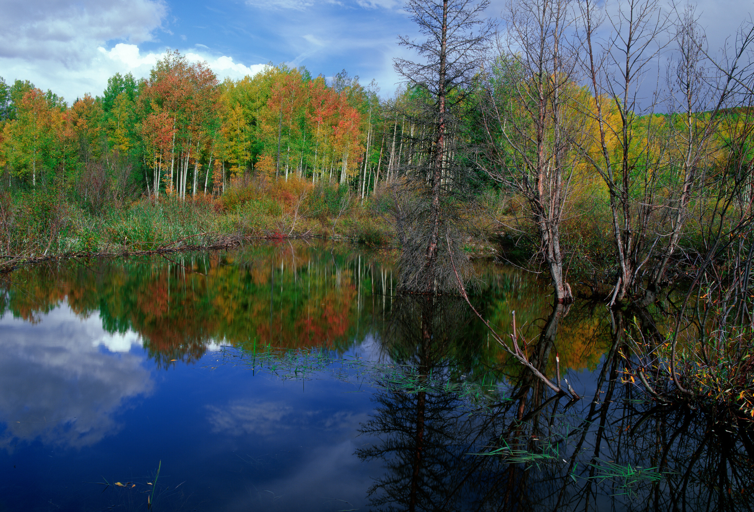 040916 Lost Lake in Fall.jpg