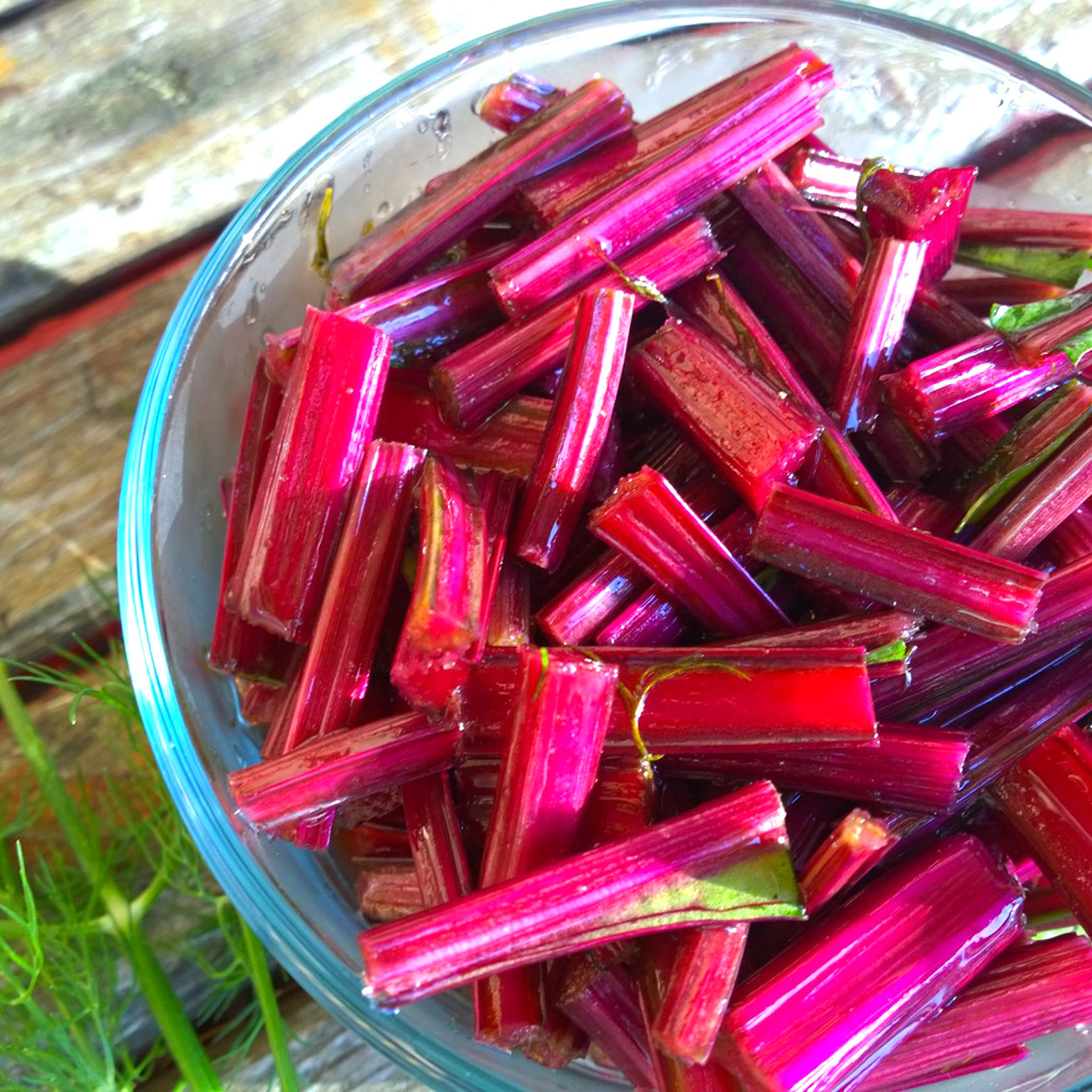 quick pickled beet stems .jpg