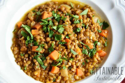 Fast-Fixing Hearty Vegetarian Lentil Soup  by  Attainable Sustainable