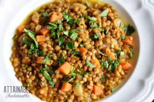 Fast-Fixing Hearty Vegan Lentil Soup  by  Attainable Sustainable