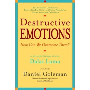 DestructiveEmotions-DanielGoleman.jpg