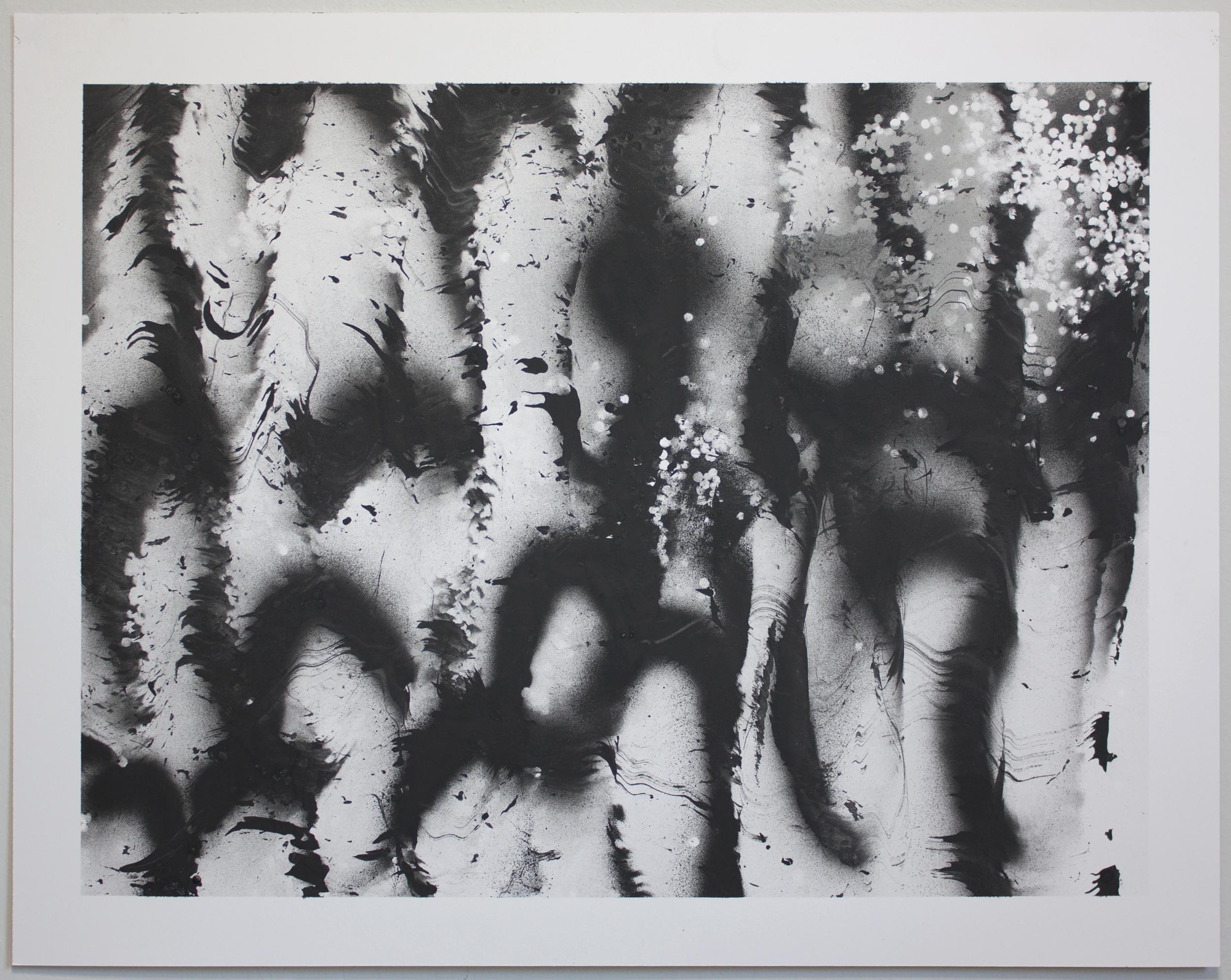 Untitled  2015 Oil enamel on paper 19 x 24 in.
