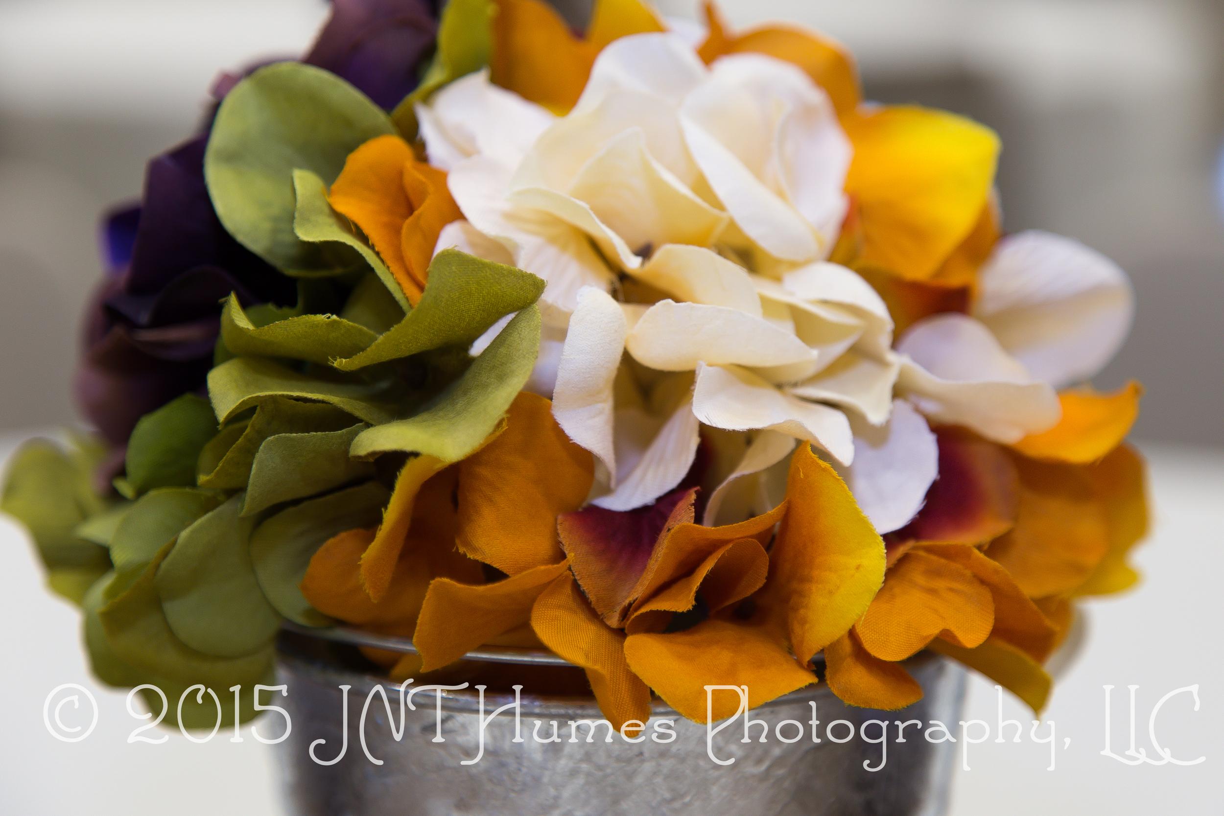 IMG_13102015-09-19© 2015 JNT Humes Photography, LLC.jpg