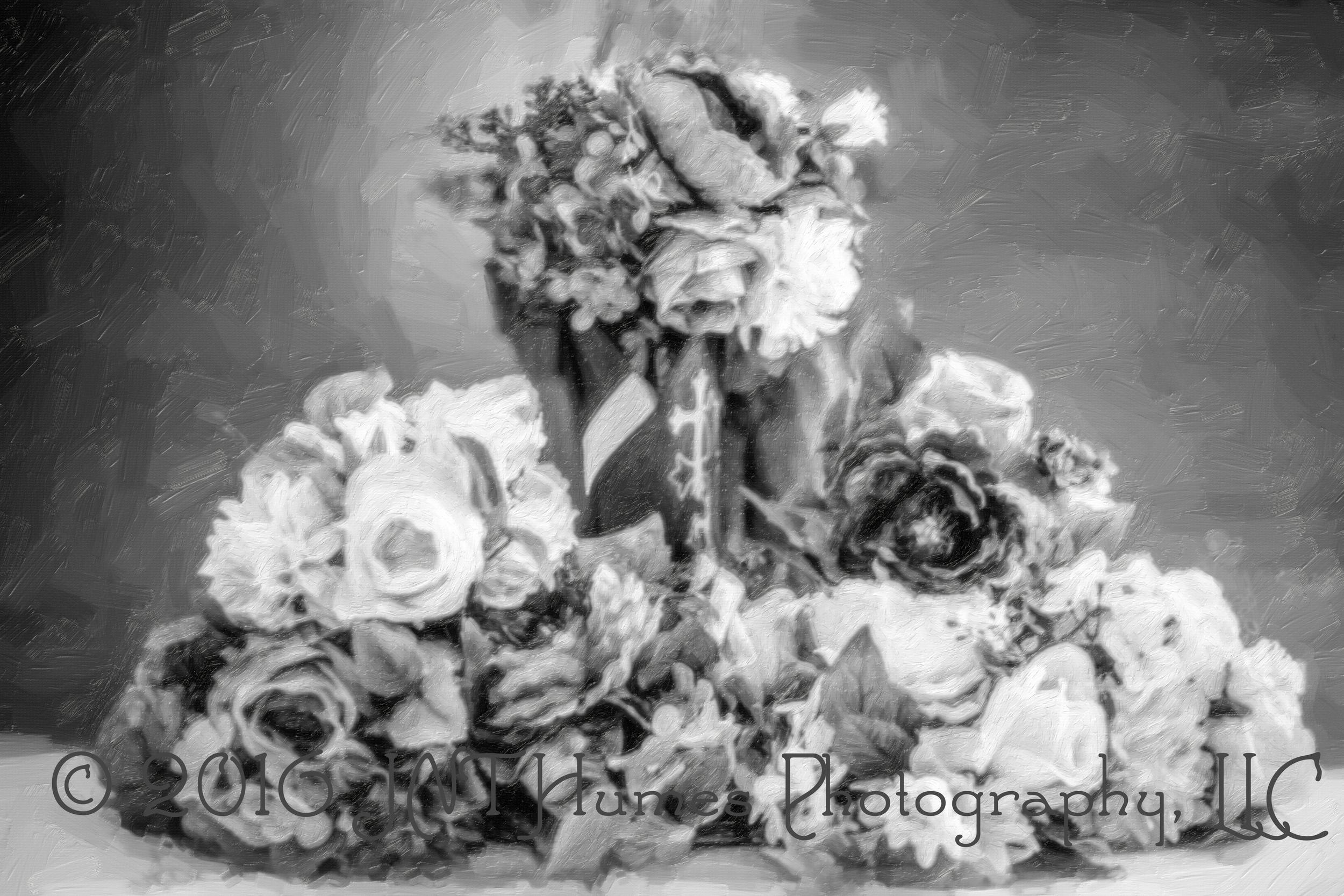 IMG_0028-Edit-Edit© 2016 JNT Humes Photography, LLC.jpg