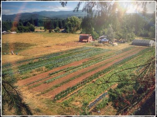 portland oregon farm
