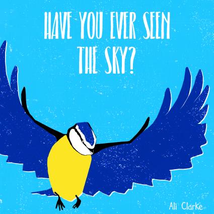 SkyCover.jpg