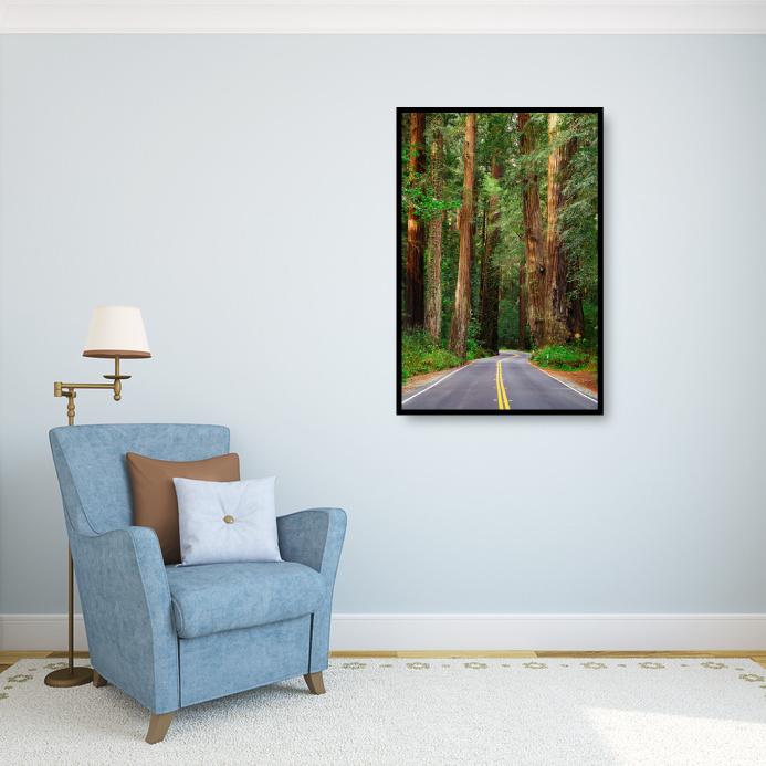 009-Road-to-Redwoods.jpg
