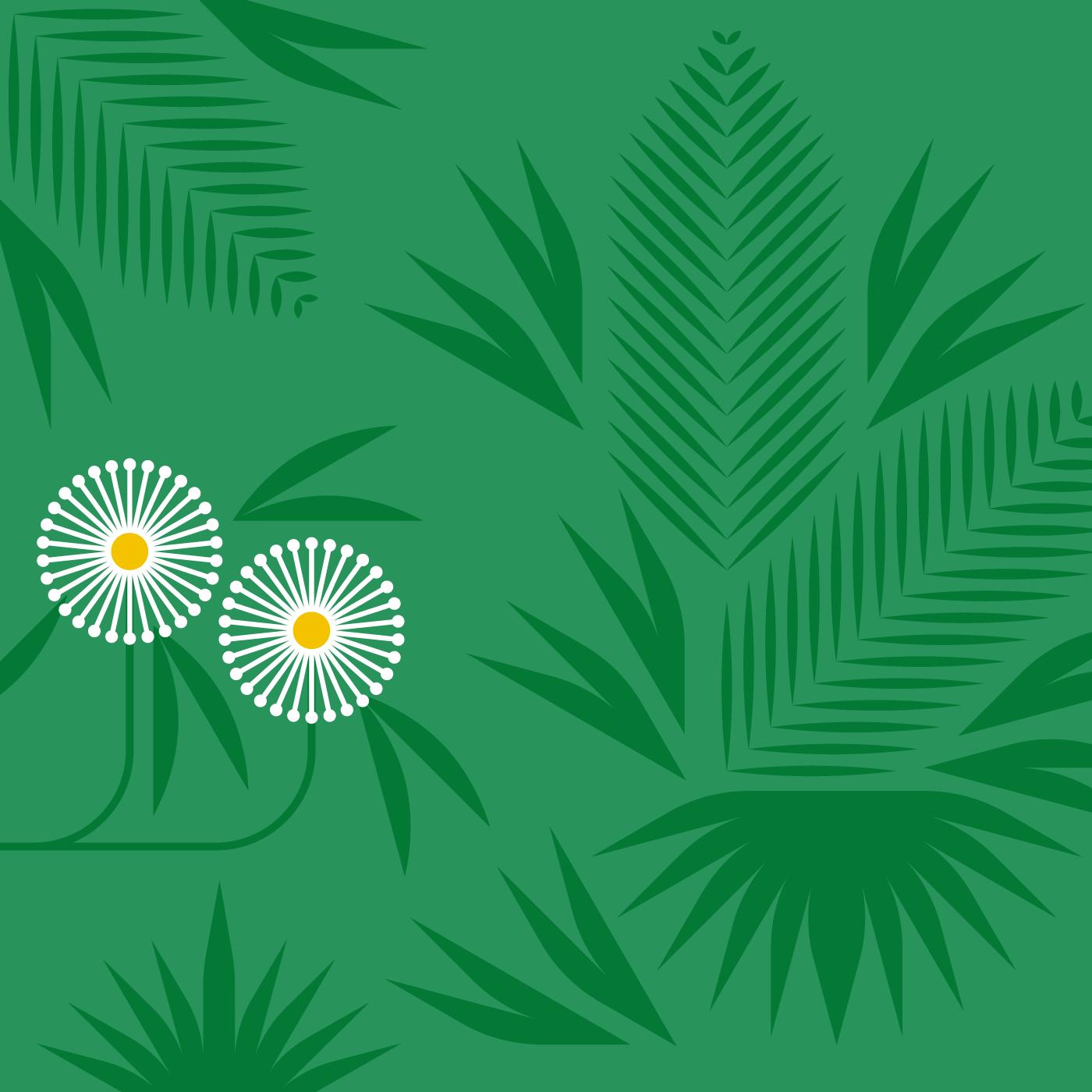 01-mville-plants.png
