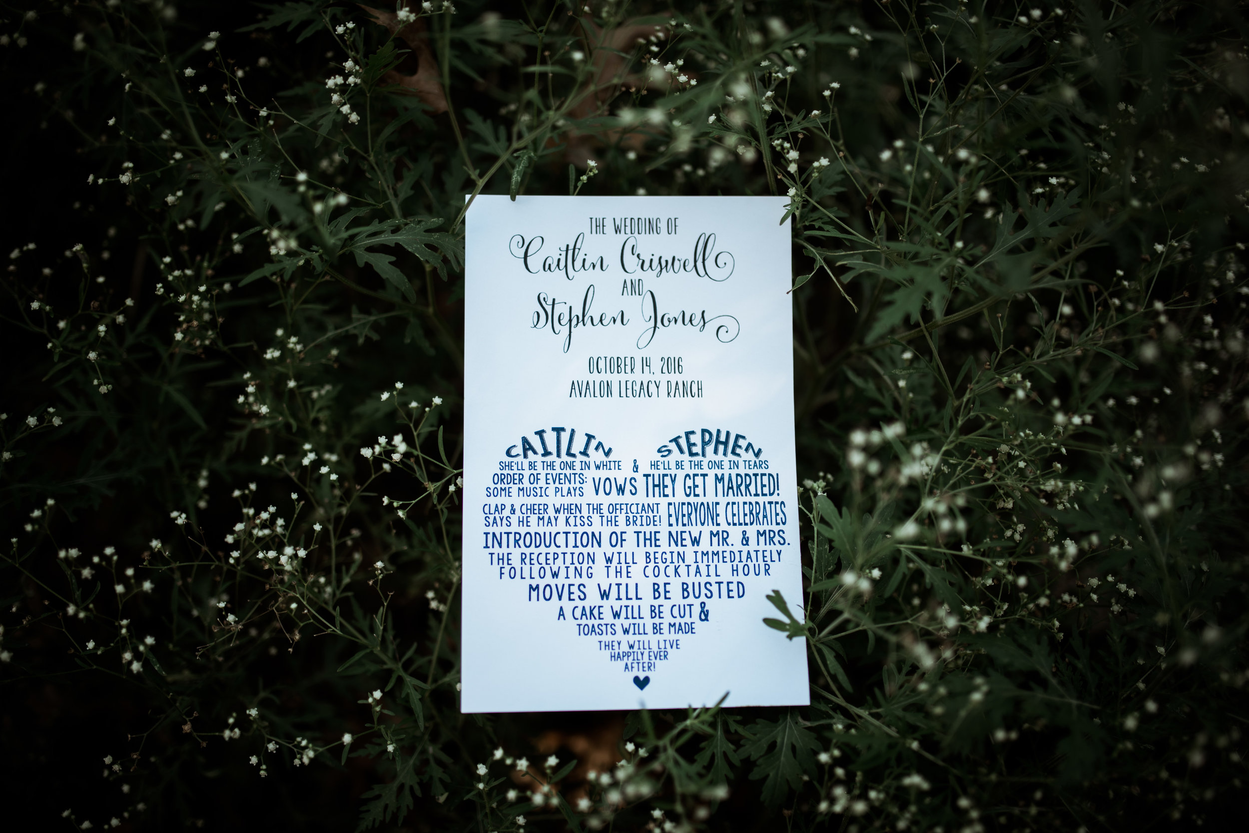 jones wedding-360.jpg