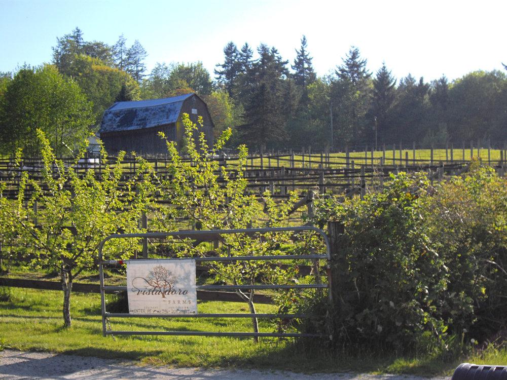 James.bc ,  Langley vista d'oro winery ,  CC BY-SA 3.0
