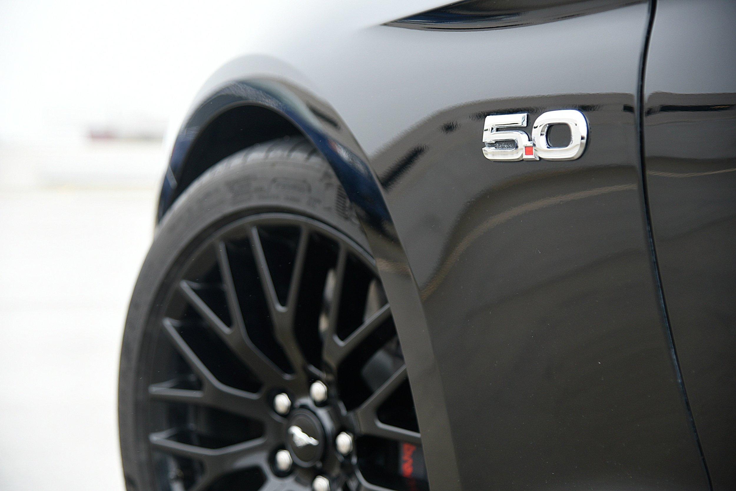 Mustang-5.jpg