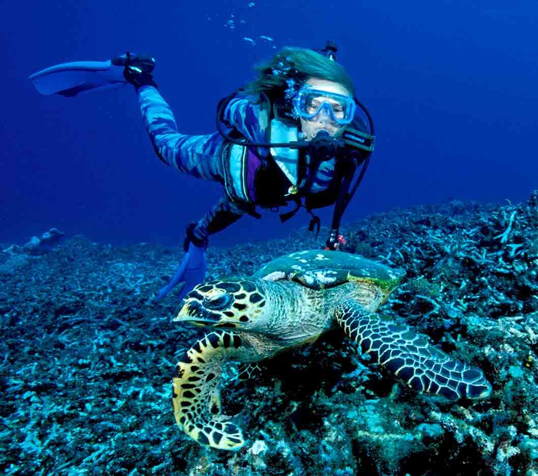 Gili-Trawangan-Lombok-Activities-Activity-Scuba-Scubadive-Scubadiving-Dive-Diving-73.jpg