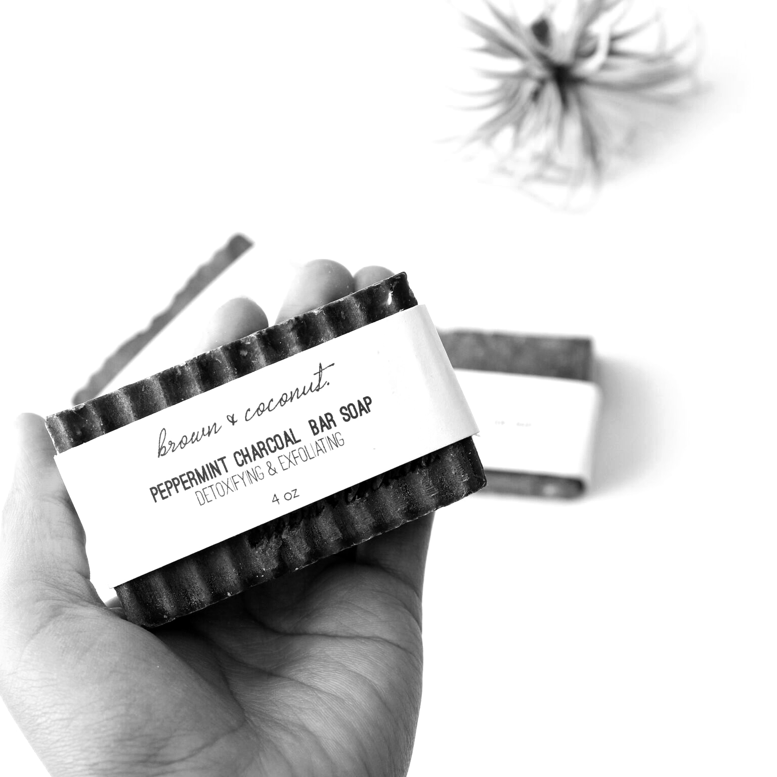 Peppermint-Charcoal-Bar-Soap-Brown-And-Coconut_preview.jpg