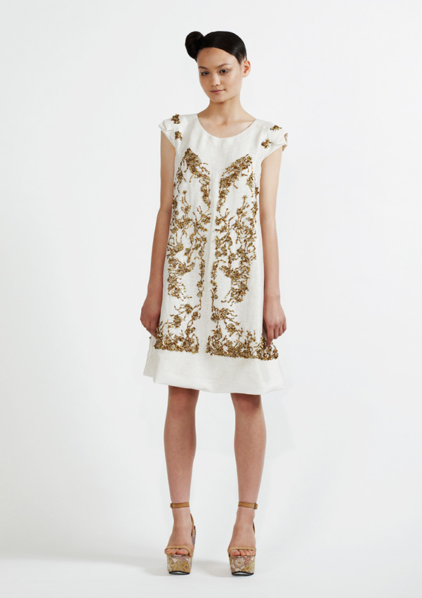 135/S91344 Metal Embroidered Dress