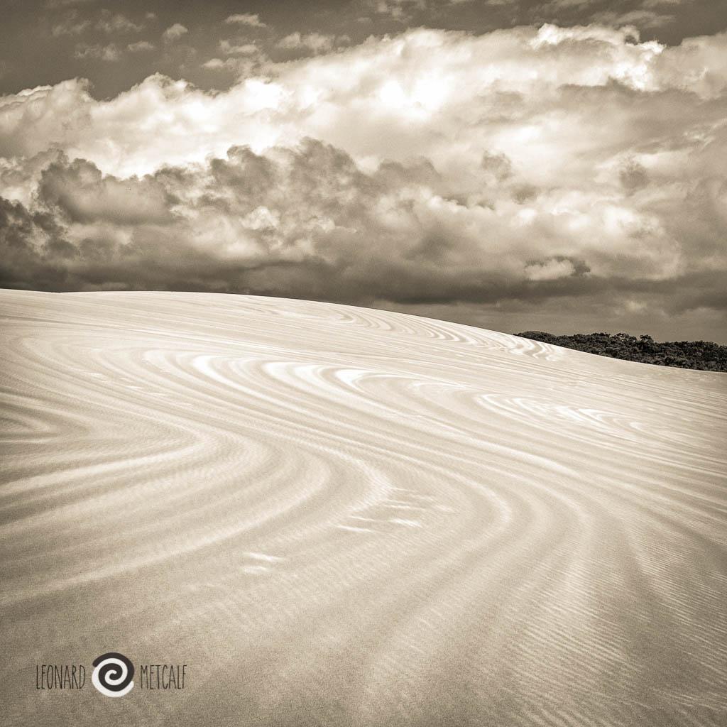 Myall Lakes sand dunes © Leonard Metcalf 2015
