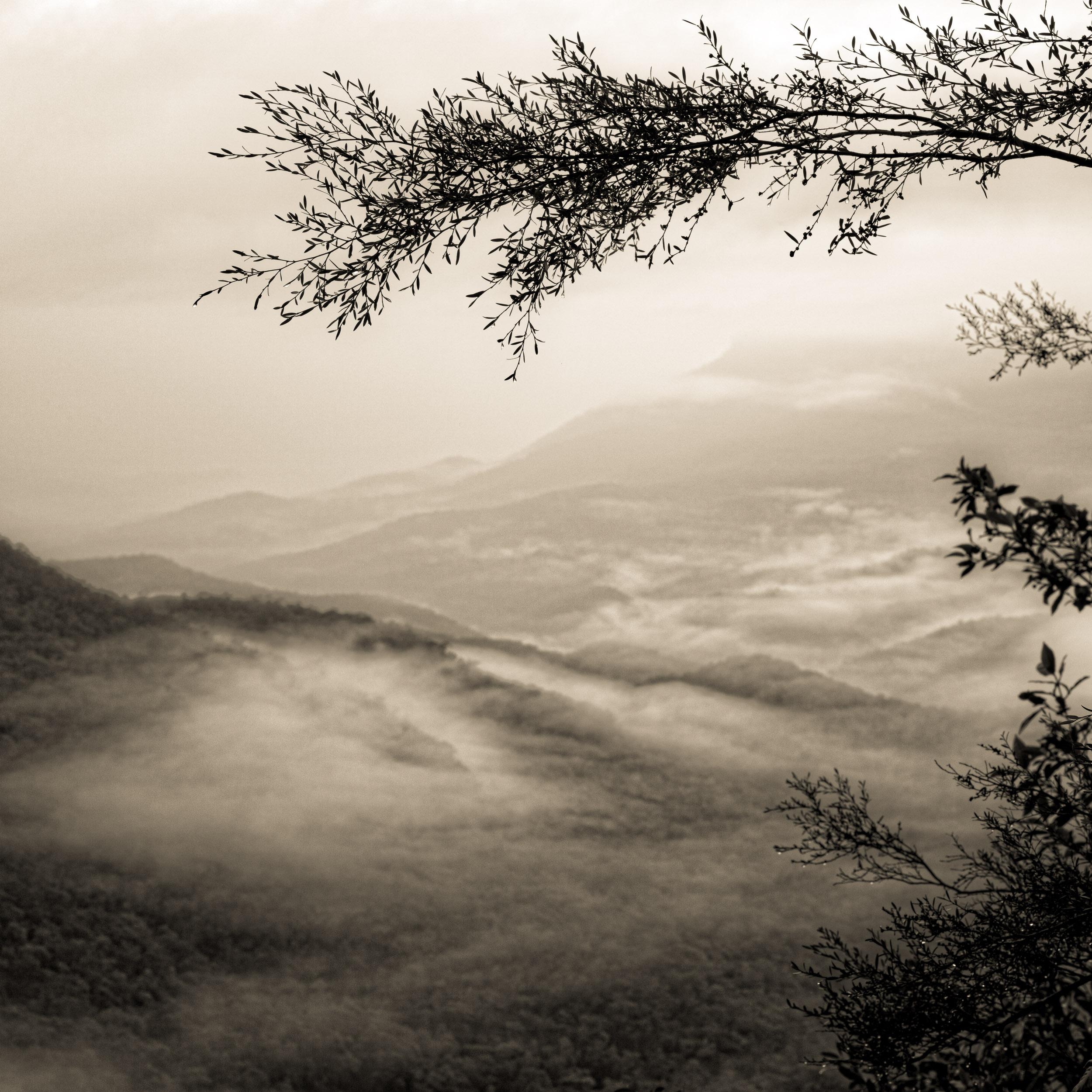 The Jamison Valley, Katoomba, The Blue Mountains, Australia Copyright © Len Metcalf 2016