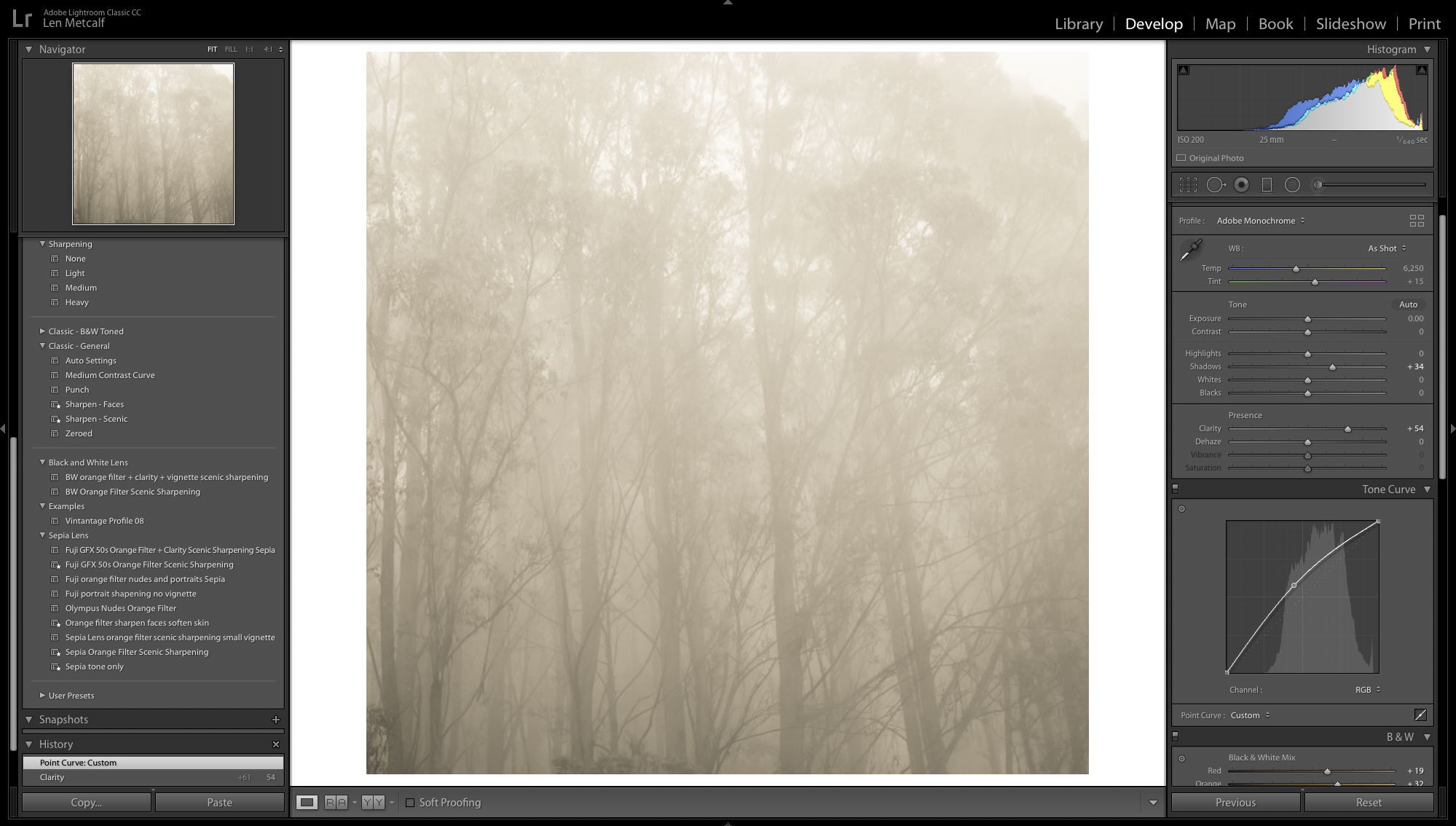 In this photograph I have opted to not set the black or the white point. So as to retain the misty feel.