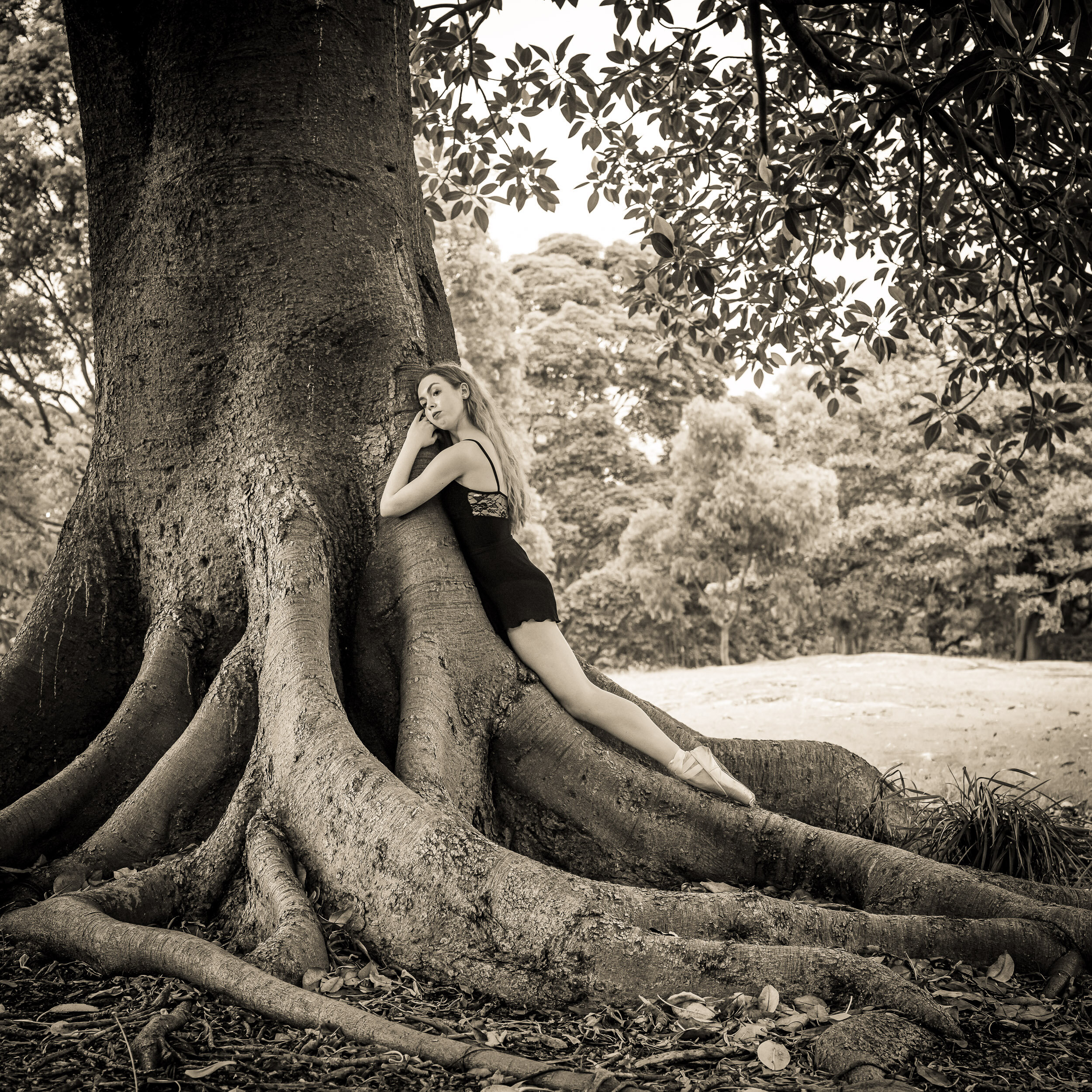 Dancers and Trees Series from our forthcoming book 'Our Love Affair with Trees' - Georgia and Morton Bay Fig. We are exploring our esoteric emotional response to trees and our deep physiological dependence on them for our survival. Playing with feelings, impressions and searching for meaning and emotions. Trees are connected with us spiritually, physically and emotionally.