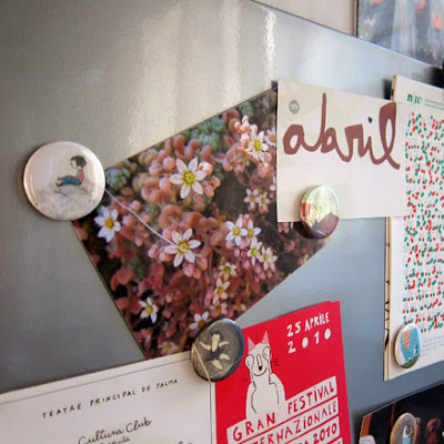 Cute illustration magnets. Giveaway by Diana Toledano