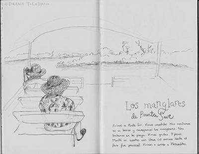 Mexico Travel sketchbook: Cozumel mangroves