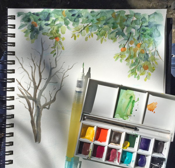 orange-tree-locke-sketch-diana-toledano3.png
