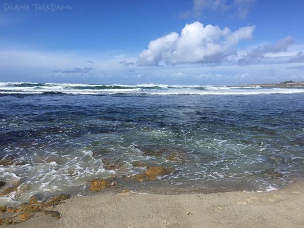 The Pacific Ocean!
