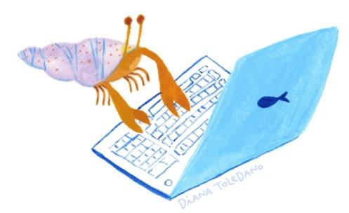 computer-hermit-crab-diana-toledano.jpg