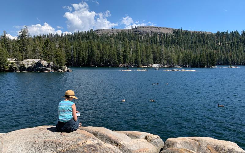 diana-toledano-drawing-alpine-lake.png