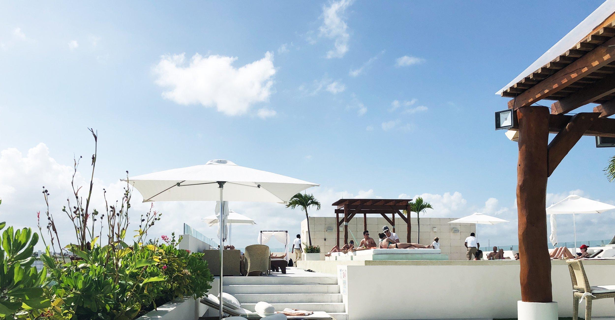 Rooftop Pool at The Palm at Playa