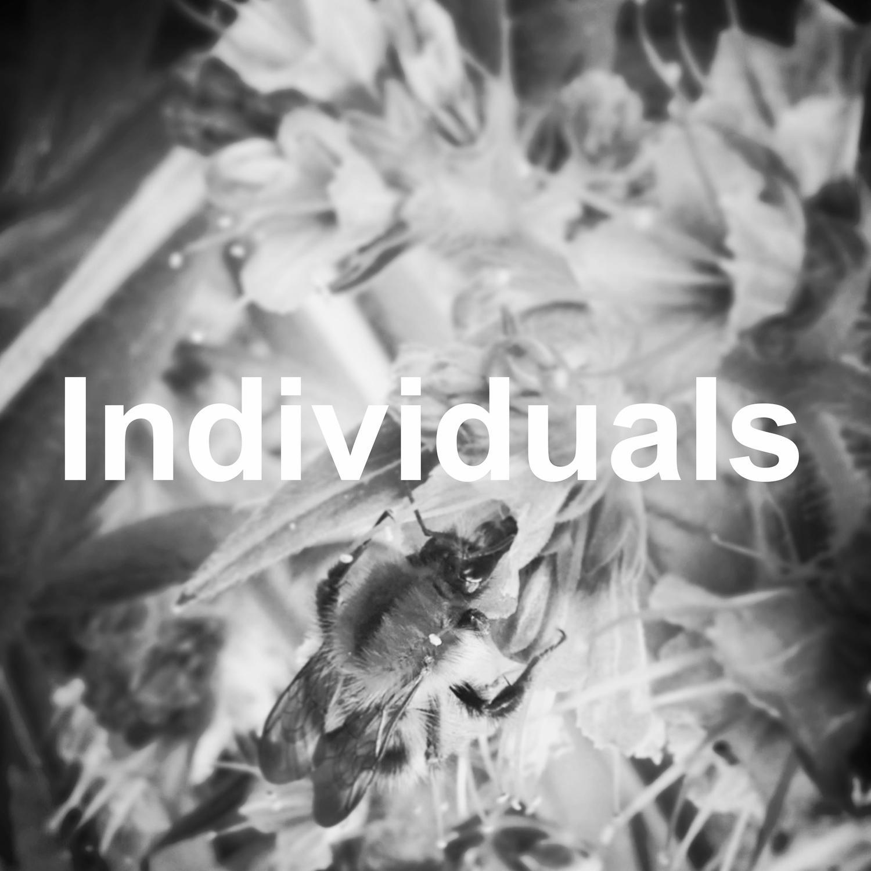 individuals.jpg