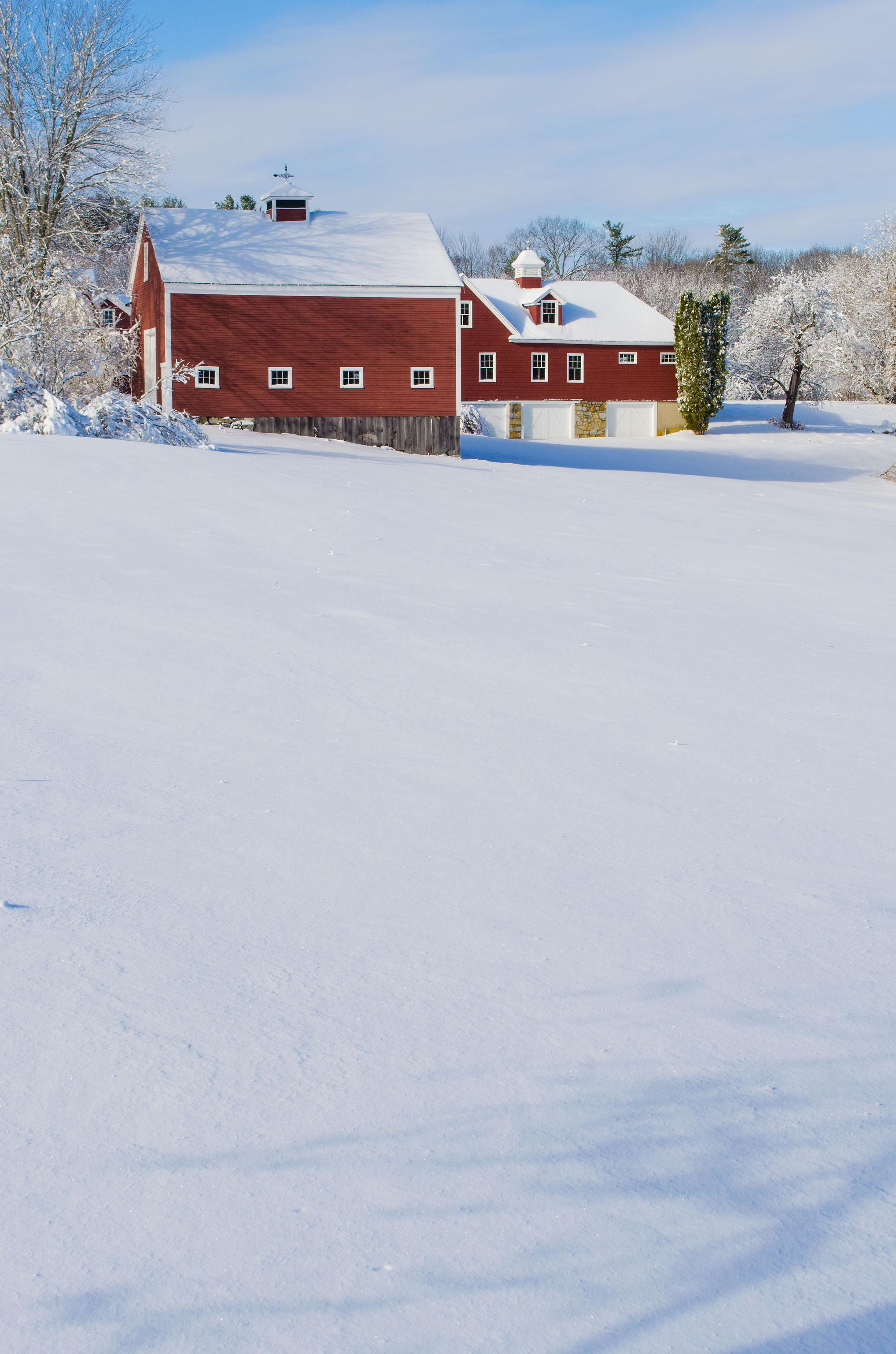 Winter Wonder Land_DSC0116.jpg