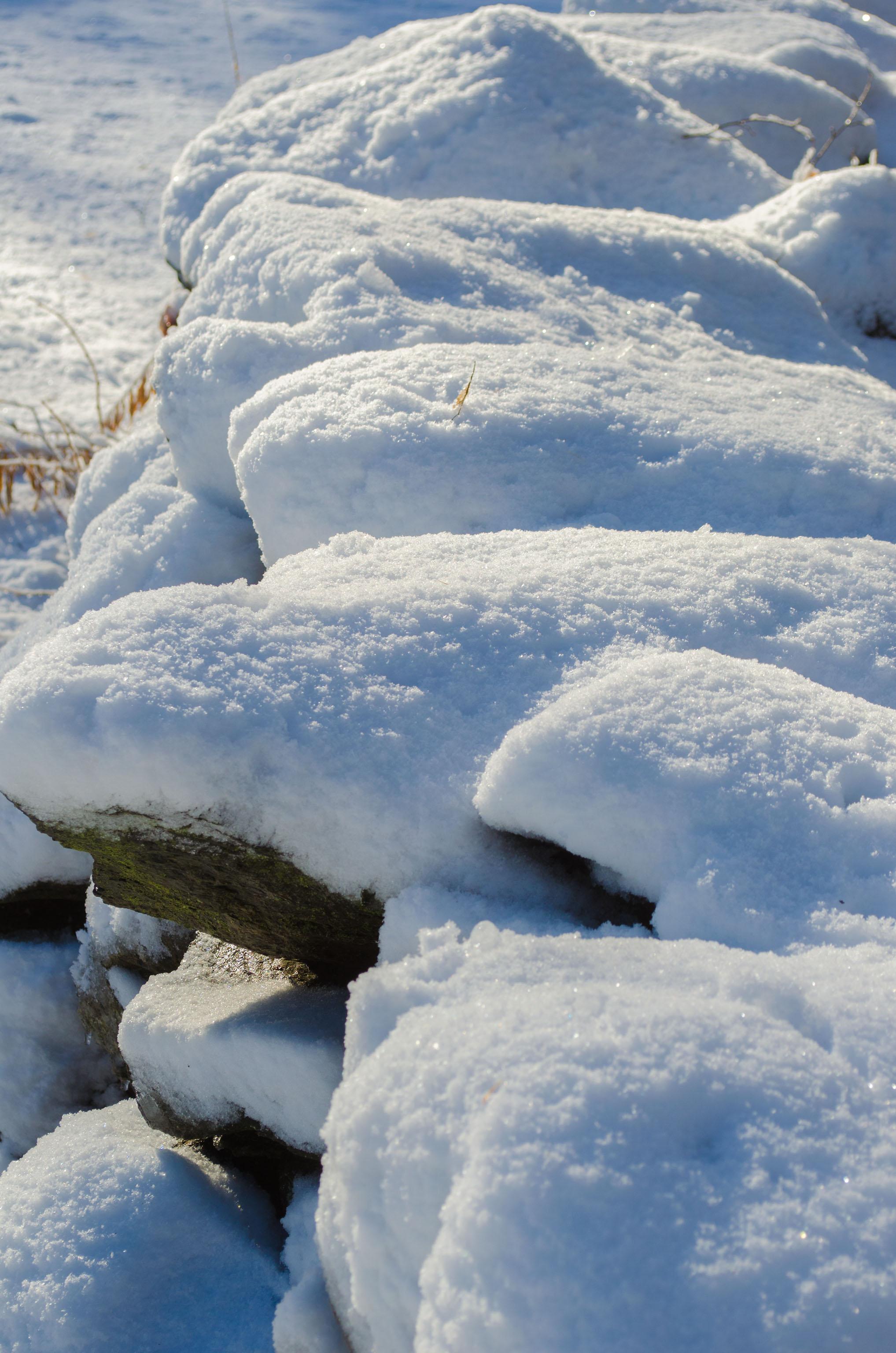 Winter Wonder Land_DSC0074.jpg