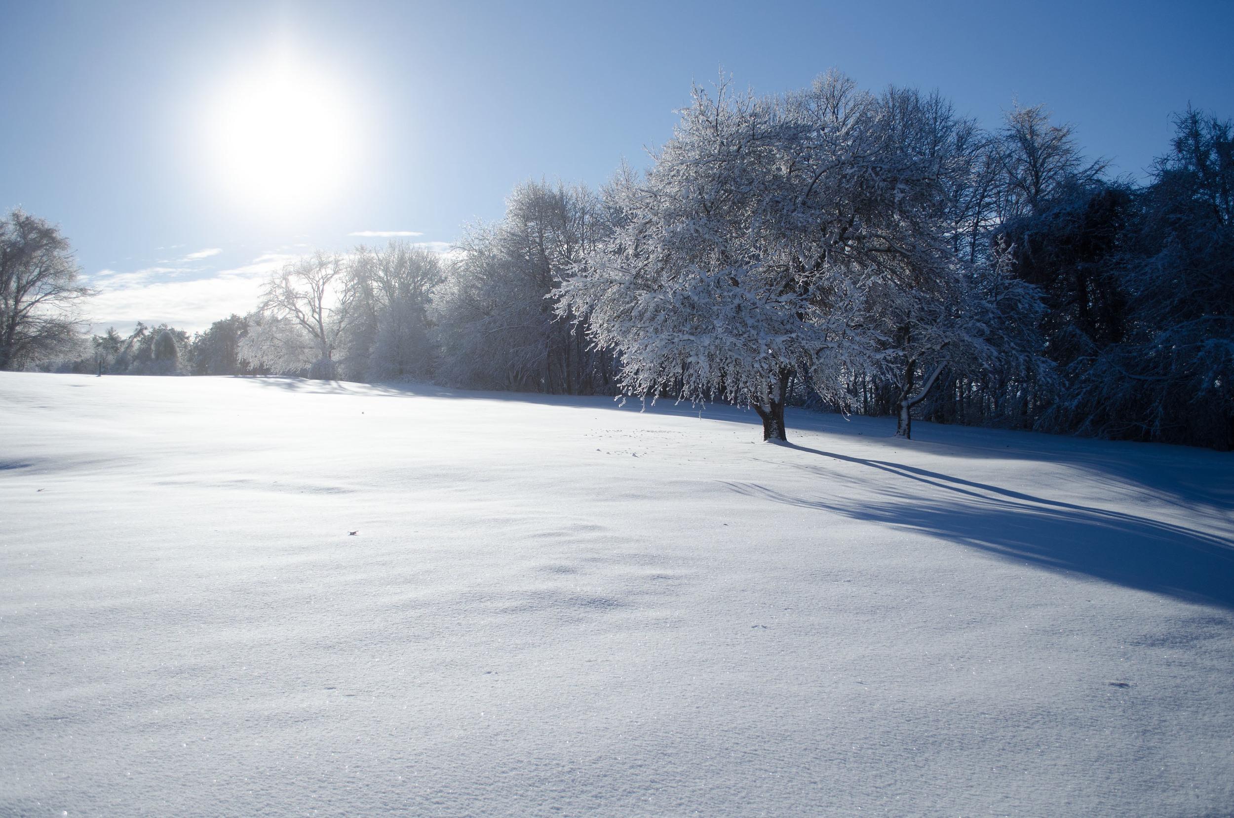 Winter Wonder Land_DSC0008.jpg