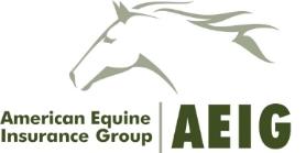 AEIG Logo.jpg