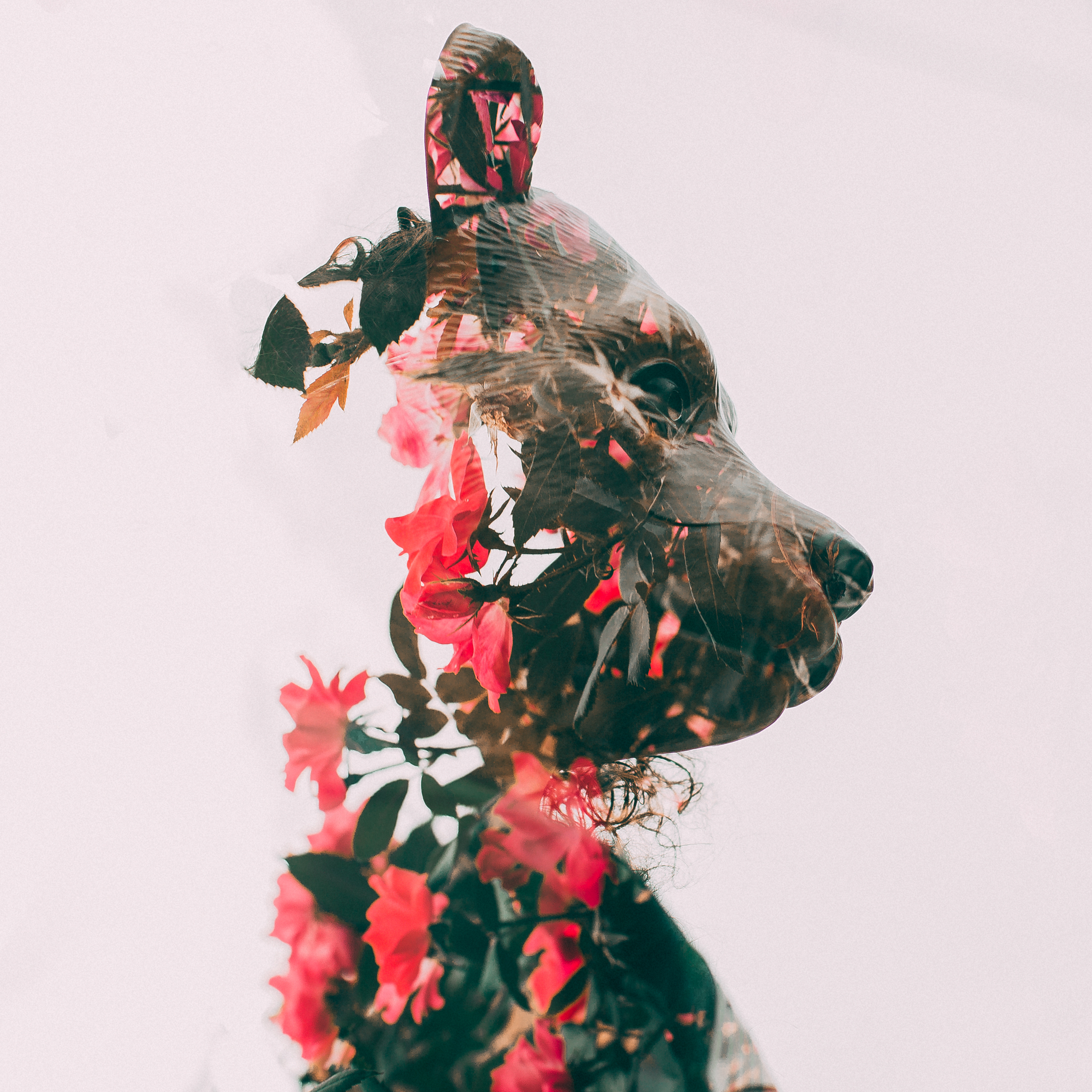 double exposure-36-Edit.jpg