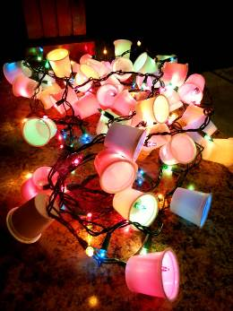 viralnova.com   Lighted garland