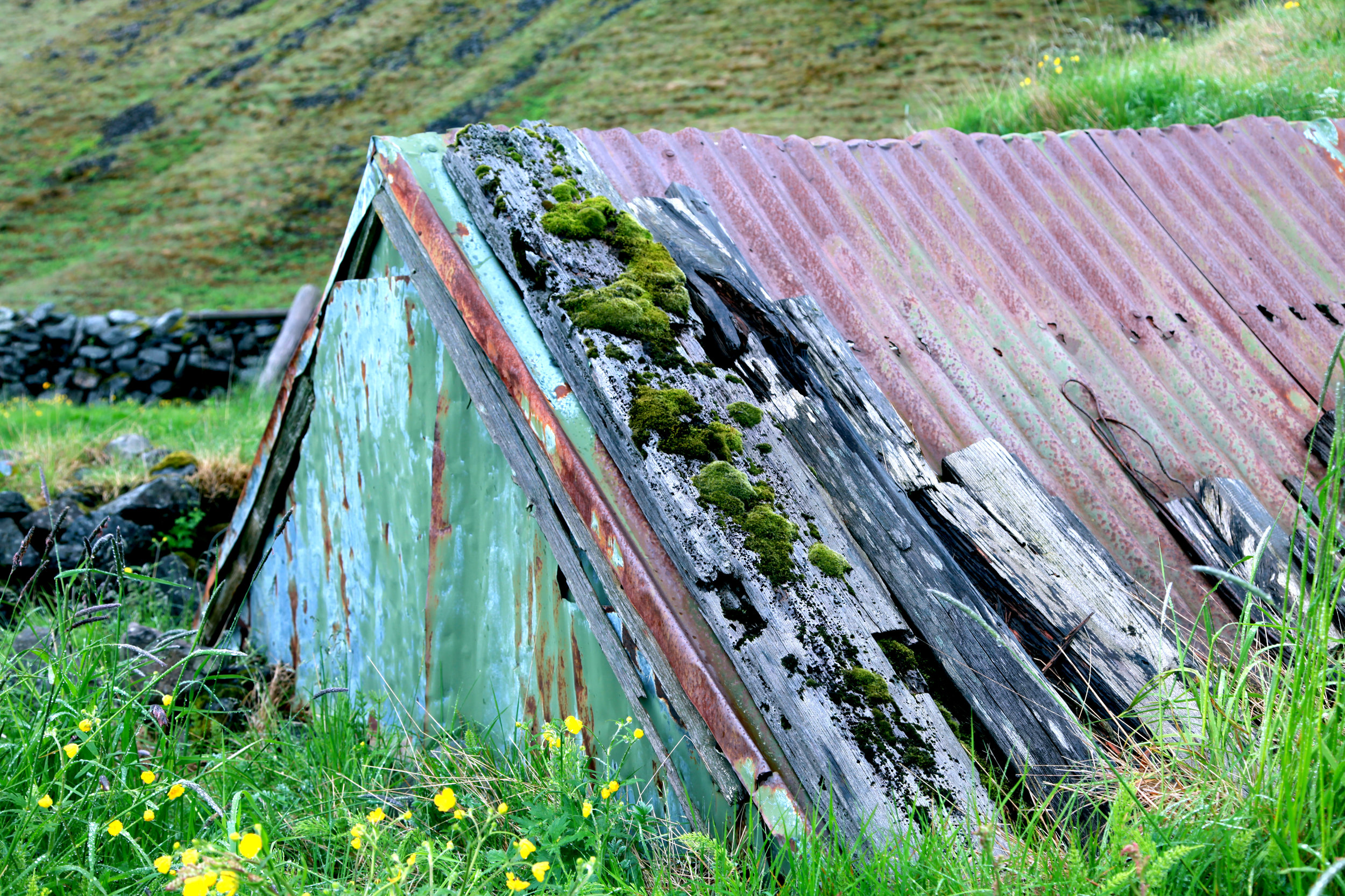 Old home in the foothills of Iceland displaying multiple shades of green.