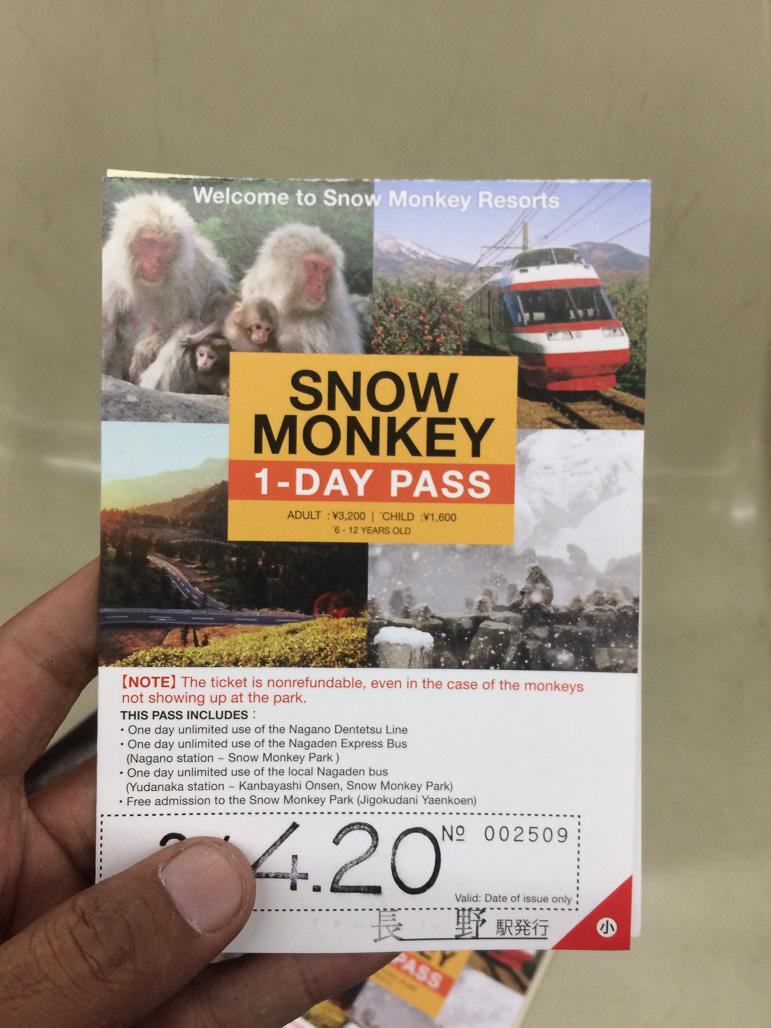 Foto 7 - Snow Monkey Park Pass